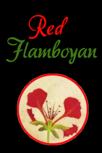Red Flamboyan